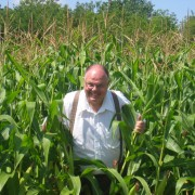 John in the cornfield